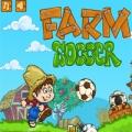 1410889146_igra-fermerskiy-futbol